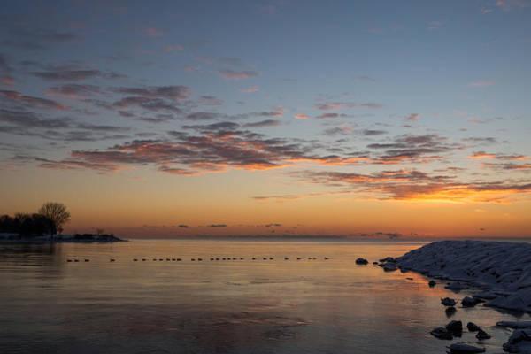 Photograph - A Long Line Of Canada Geese At Sunrise by Georgia Mizuleva