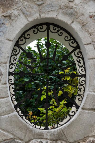 Photograph - A Lush Garden Framed In A Fence Window by Georgia Mizuleva