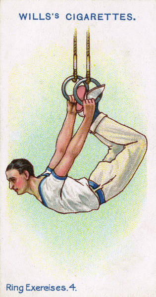 Wall Art - Drawing - A Male Gymnast Hangs From The  Rings by Mary Evans Picture Library