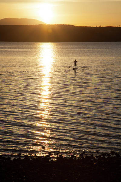 Wall Art - Photograph - A Male Paddles His Stand Up Paddle by Craig Moore