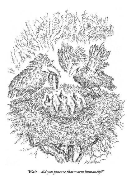 Spouse Drawing - A Mama Bird In The Nest Questions Her Spouse by Edward Koren