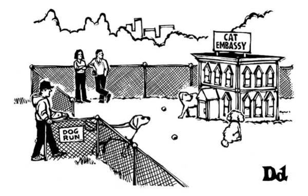Small House Drawing - A Man And Dog Enter A Dog Run by Drew Dernavich