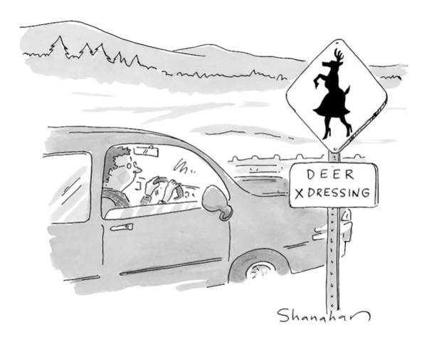 Deer Drawing - A Man In A Car Passes A Street Sign That Says by Danny Shanahan