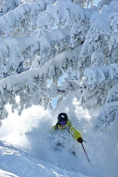 Wall Art - Photograph - A Man Skis In Wyoming by Derek DiLuzio