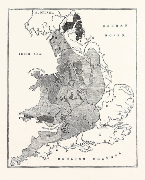 Distribution Drawing - A Map Showing The Geological Position And Commercial by English School