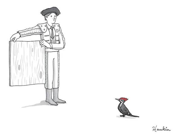 Drawing - A Matador Provokes A Red-headed Woodpecker by Charlie Hankin