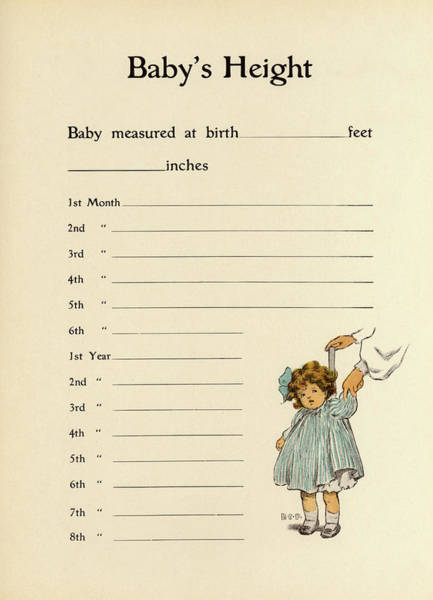 Wall Art - Drawing - A Measurement Chart For Recording by Mary Evans Picture Library