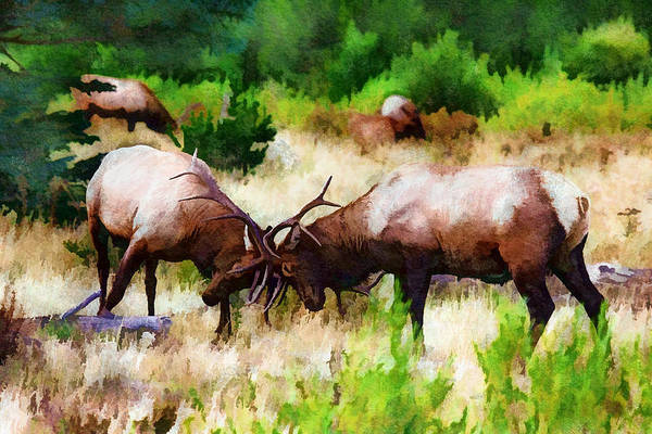 Digital Art - A Meeting Of The Antlers by Rick Wicker