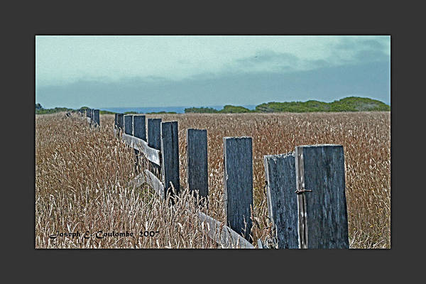 Digital Art - A Mendocino Fence Line by Joseph Coulombe
