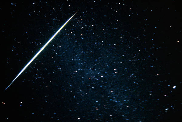 Star Track Wall Art - Photograph - A Meteor Track In The Constellation Of Cygnus by Pekka Parviainen/science Photo Library