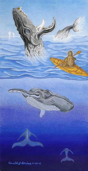 Save The Whales Wall Art - Drawing - A Mighty Grace by Gerald Strine