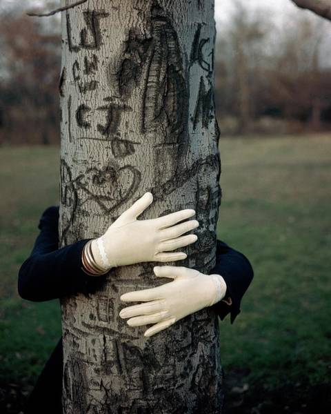 Photograph - A Model Hugging A Tree by Frances Mclaughlin-Gill