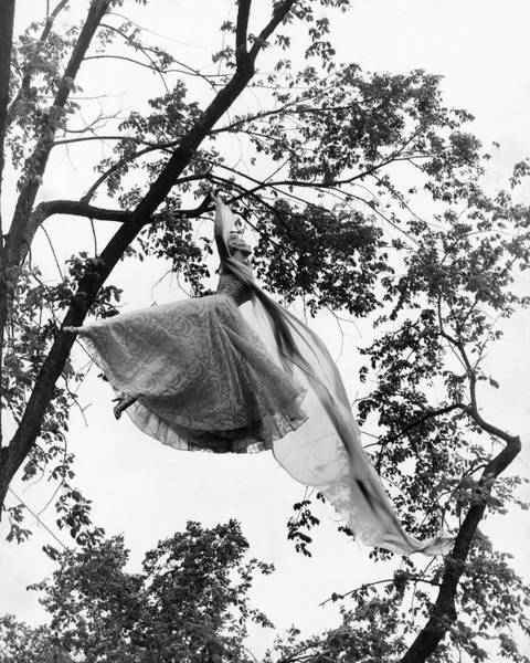 Young Woman Photograph - A Model Wearing A Dress In A Tree by Gene Moore
