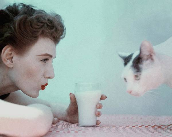 Photograph - A Model With A Cat by Richard Rutledge