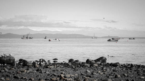 Photograph - A Moment In Time Herring Season by Roxy Hurtubise