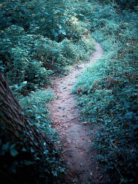 Bethesda Photograph - A Morning Stroll Along The River by Cameron Davidson