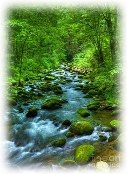 Photograph - A Mountain Stream by Mel Steinhauer