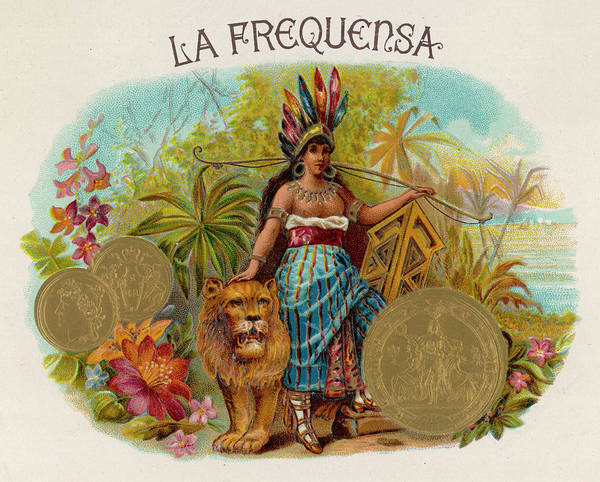 Gold Medal Drawing - A Native American Woman With A Lion by Mary Evans Picture Library