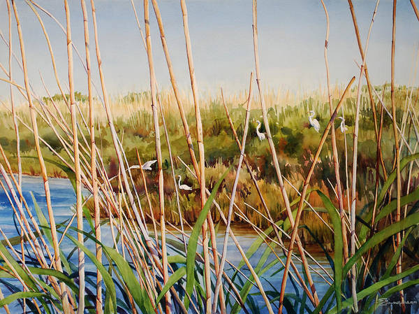 Marsh Bird Painting - A Natural Aviary by Sue Zimmermann