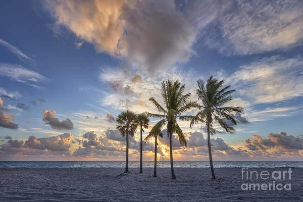 South Florida Wall Art - Photograph - A New Tomorrow by Evelina Kremsdorf