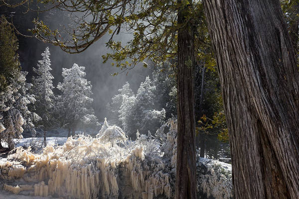 Lake Superior Photograph - A North Woods Fairy Tale by Mary Amerman