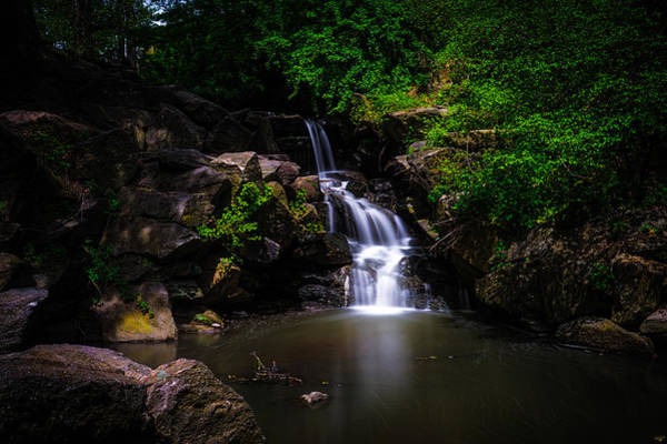 Photograph - A North Woods Waterfall In Spring by Chris Lord