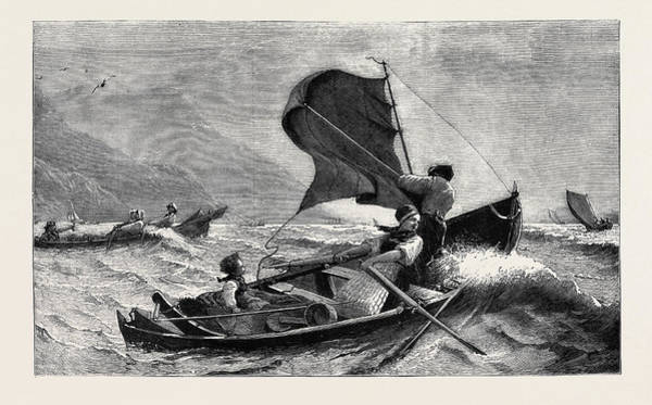 Wall Art - Drawing - A Norwegian Fishing-boat by English School