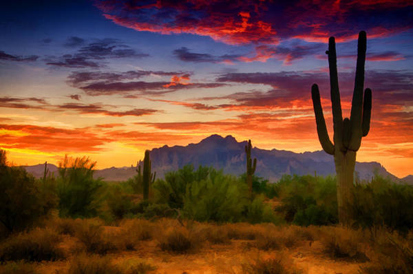 Sonoran Desert Photograph - A Painted Desert  by Saija  Lehtonen