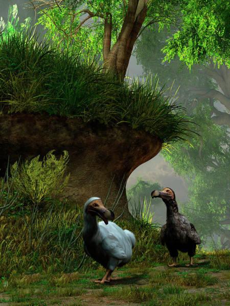 Grass Tree Digital Art - A Pair Of Dodo Birds Waddle Along A by Daniel Eskridge/stocktrek Images