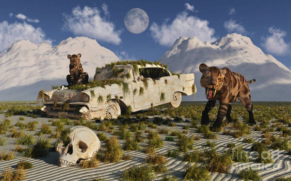 Smilodon Wall Art - Digital Art - A Pair Of Sabre-toothed Tigers Come by Mark Stevenson