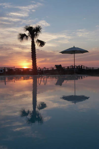 Getaway Photograph - A Palm And Umbrella Reflect by Tom Hopkins