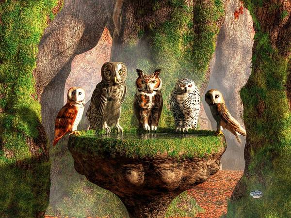 Digital Art - A Parliament Of Owls by Daniel Eskridge
