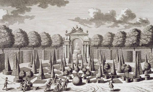 Structure Drawing - A Parterre With Orange Trees In The Garden Of The Lichtenstein Palace by Salomon Kleiner
