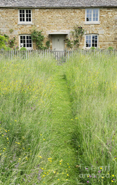 English Cottage Photograph - A Pathway Home by Tim Gainey