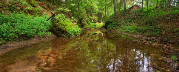 Photograph - A Peaceful Glen by Leda Robertson