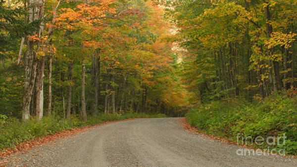 Photograph - A Peaceful Road by Charles Kozierok