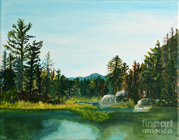 Adirondack Mountains Painting - A Peak At Ampersand Mt. by Christine Dekkers