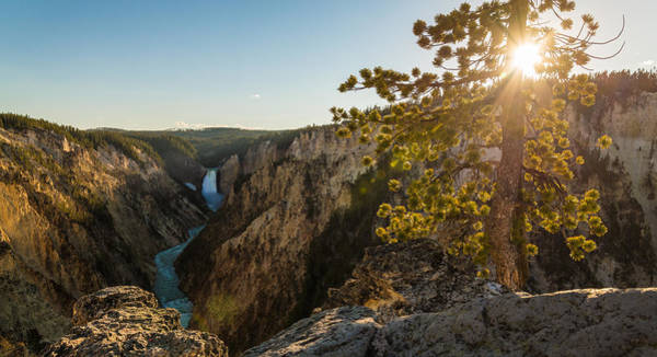 Yellowstone Canyon Photograph - A Perfect View by Kristopher Schoenleber