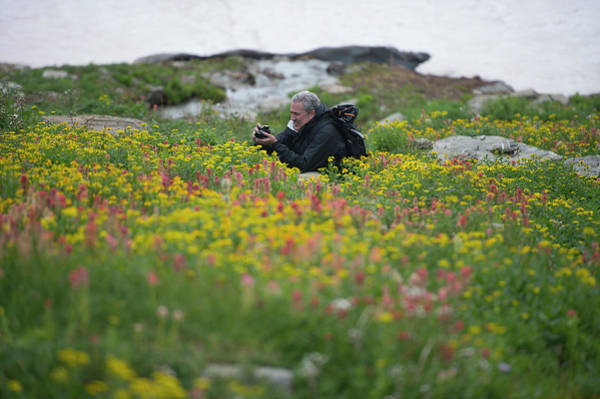 Bugaboo Photograph - A Photographer In A Thick Field Of by Topher Donahue
