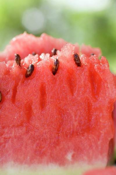 Watermellon Wall Art - Photograph - A Piece Of Watermelon by Foodcollection