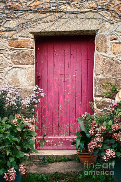 Wall Art - Photograph - A Pink Door by Olivier Le Queinec
