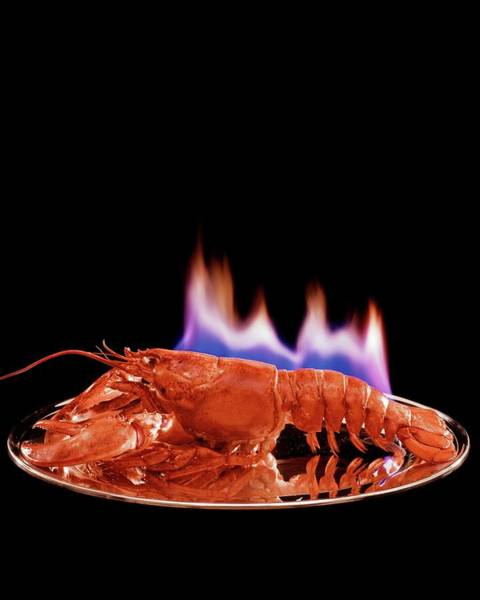Wall Art - Photograph - A Plate Of Lobster Flambe by Fernand Fonssagrives