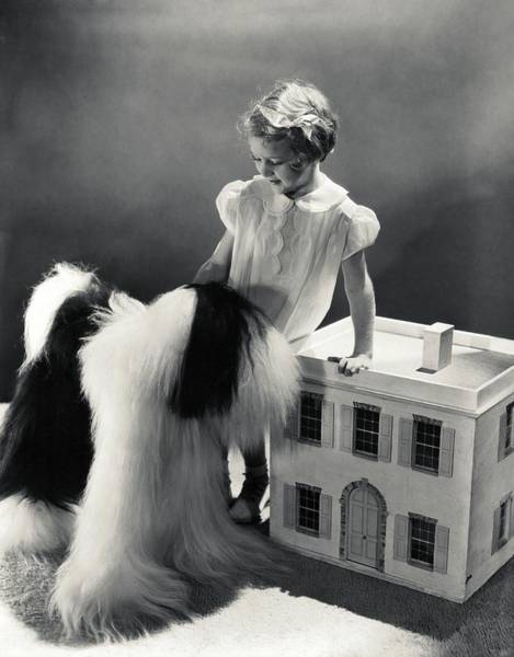 6 Photograph - A Portrait Of A Young Girl And A Dog by Horst P. Horst