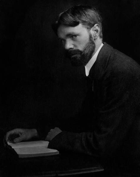 Male Portrait Photograph - A Portrait Of D.h. Lawrence by Elliott & Fry