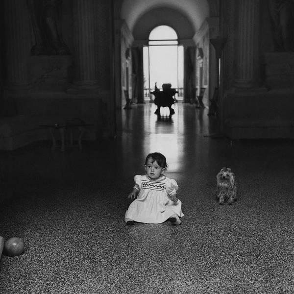 Pet Portraits Photograph - A Portrait Of Diamante Buschetti by Horst P. Horst