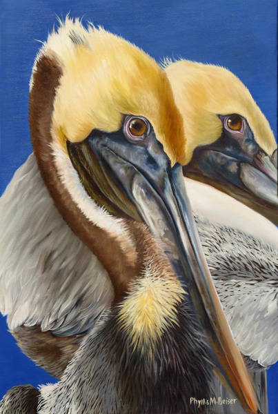 Wall Art - Painting - A Portrait Of Two Pelicans by Phyllis Beiser