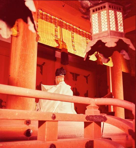 Photograph - A Priest Praying In A Shinto Shrine by Nick De Morgoli