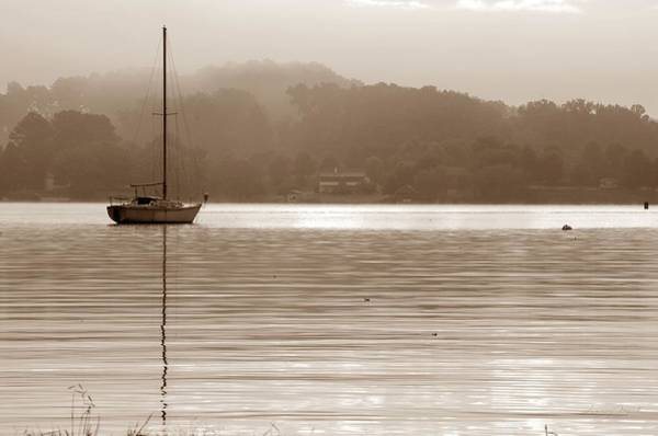 Photograph - A Quiet Morning by Sharon Popek