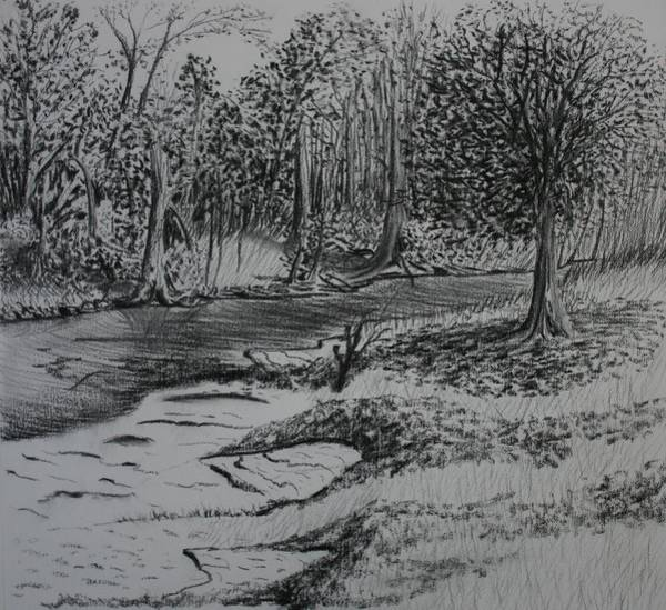 White Goose Drawing - A Quiet Stream by Stacy C Bottoms