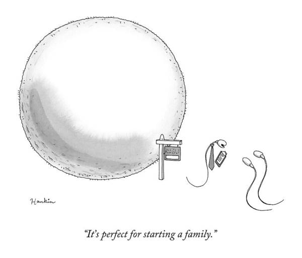 Egg Drawing - A Real-estate Sperm Selling A House Egg To Two by Charlie Hankin